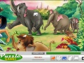 Gry Jungle Hidden Object forum - gry online