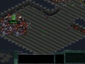 Gry StarCraft Flash RPG forum - gry online