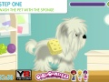 Gry Cutie Pet Care forum - gry online