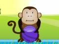 Gry Hungry monkey forum - gry online
